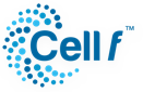 Cell Therapy Perth